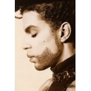Prince - The Hits Collection ( DVD Vidéo )